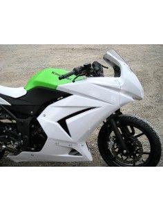 Racing fairing Plastic-Bike Kawasaki Ninja 250 R