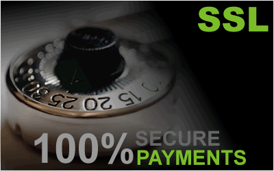 ssl 100% secure payments